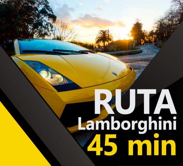 anuncio-lamborigni 45